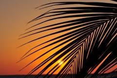 Sunset - April 23, 2012 (531x800)